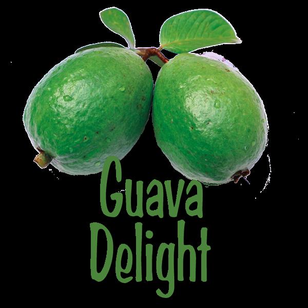 JG Group - Guava