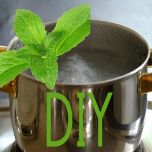 DIY Stevia Liquid Pouch